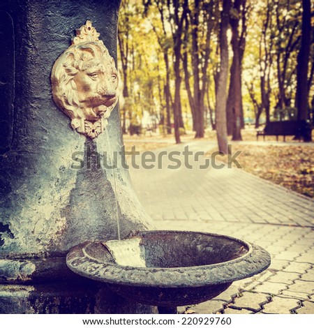 Public Water Fountain in park  in the form of Lion head with flowing water  - stock photo