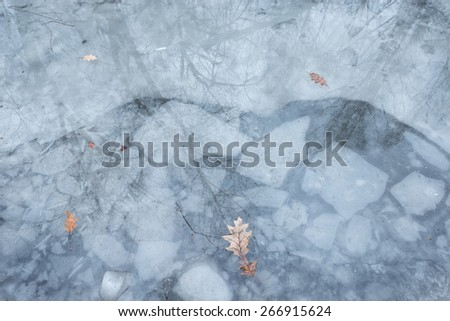 Puddle with ice and leaves in the winter forest. - stock photo