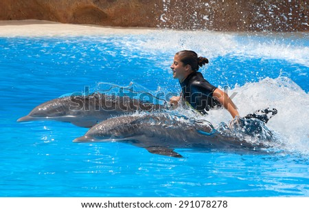 PUERTO DE LA CRUZ, TENERIFE - JULY 12: Dolphin show in the Loro Parque, which is now Tenerife's second largest attraction with biggest dolphin pool on July 12, 2014 in Puerto De La Cruz, Tenerife - stock photo