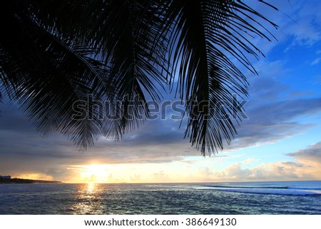 Puerto Rico Palm Frond Sunset - stock photo