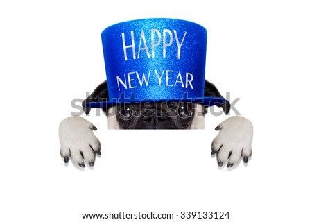 pug dog, behind  banner, with happy new year hat , isolated on white background - stock photo