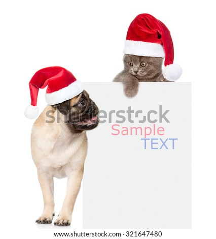 Pug puppy and small kitten with red Santa Claus hats above white banner.  isolated on white background - stock photo