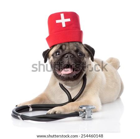 Pug puppy dog wearing nurses medical hat and stethoscope on his neck. isolated on white background - stock photo