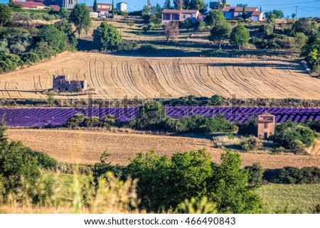 Puimoisson village with lavender field in Provence, France