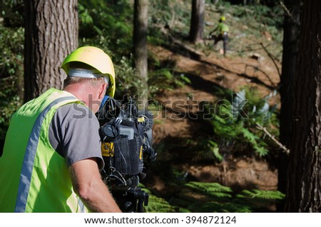 PUKEKOHE, NZ - APRIL 22: A TV cameraman films forestry work near Auckland on April 22 2014. Forestry is New Zealand's third largest export earner with more than $4 billion in global sales. - stock photo