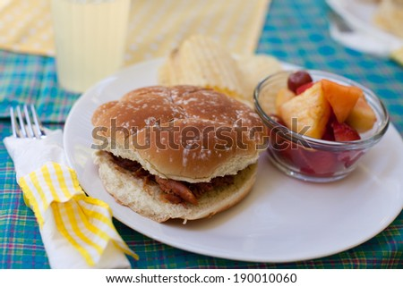 Pulled pork bbq sandwich at a girl's day out picnic luncheon with fruit, chips, and lemonade on a decorated table - stock photo