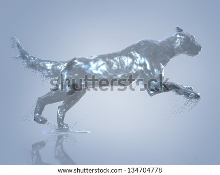 Puma in motion, cougar out of the water - stock photo
