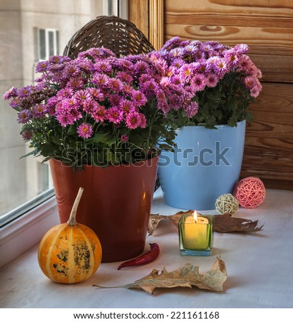 Pumpkin and chrysanthemum on the box next to a lit candle before the holiday - stock photo