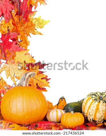 Pumpkin and gourds with autumn leaf border on a white background - stock photo