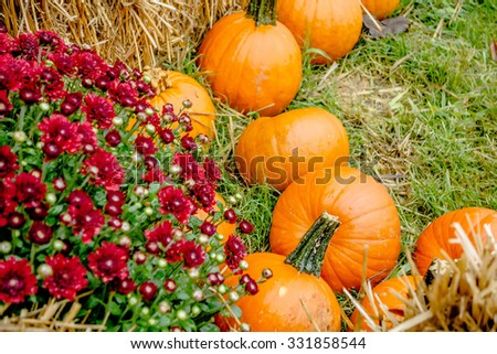 pumpkin and harvest decorations for the holidays - stock photo