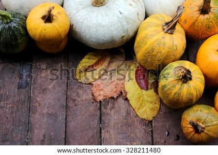 Pumpkin and leaves - Halloween, Thanksgiving and autumn background - stock photo