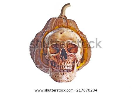 Pumpkin  and Skull Haloween - stock photo