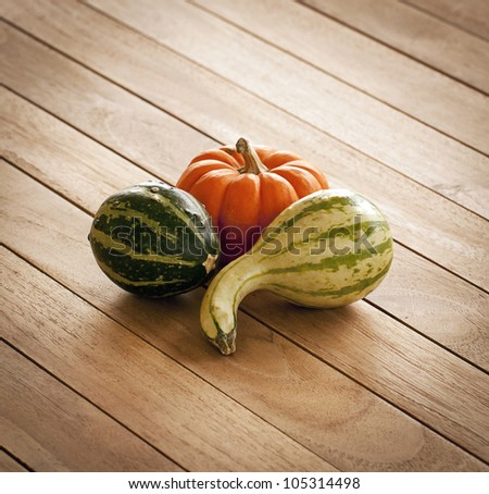 Pumpkin and Squash still life - stock photo