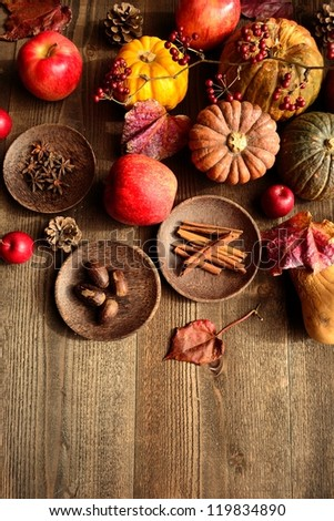 Pumpkin,apple and spice - stock photo