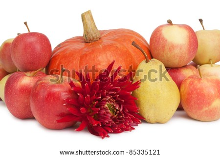 pumpkin, apples and pear and dahlia isolated on white - stock photo