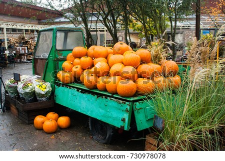 Pumpkin at the harvest autumn fair. Preparation for Halloween celebration. Many juicy orange pumpkings in the retro cart.