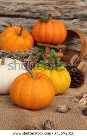 Pumpkin fancy on wood background