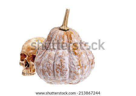 Pumpkin Haloween - stock photo