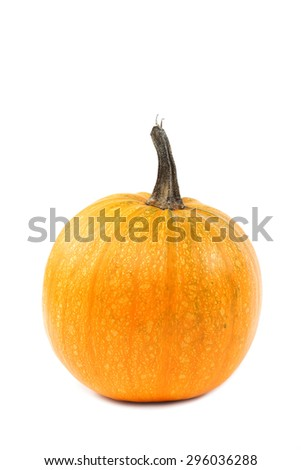 Pumpkin isolated on white background. - stock photo