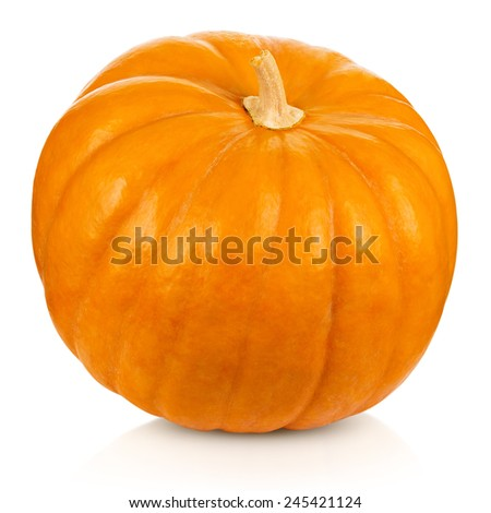 Pumpkin on a white background. Clipping Path