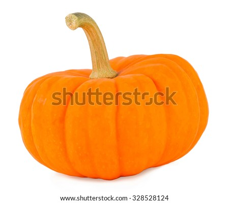 Pumpkin on a white background, pumpkin on white the isolated
