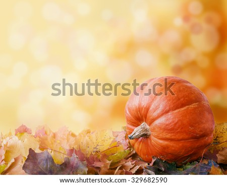 pumpkin on autumn leaves. bokeh background with space for your text - stock photo