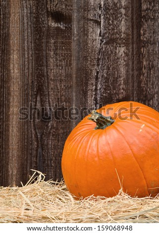 Pumpkin on hay against rustic wooden background, closeup