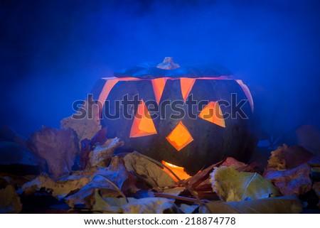 Pumpkin on the Halloween day - stock photo