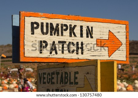 Pumpkin patch sign with arrow leading to pumpkins - stock photo