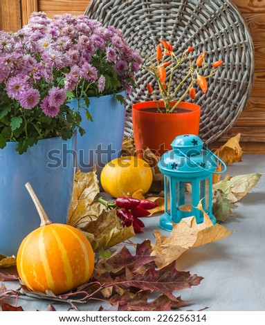 Pumpkin, pepper and chrysanthemum on the box next to a lit candle before the holiday - stock photo