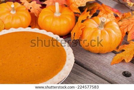 Pumpkin pie with small pumpkins and leaves
