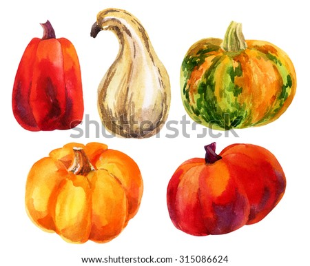 Pumpkin set. Watercolor pumpkins. Hand drawn illustration isolated on white background.  - stock photo