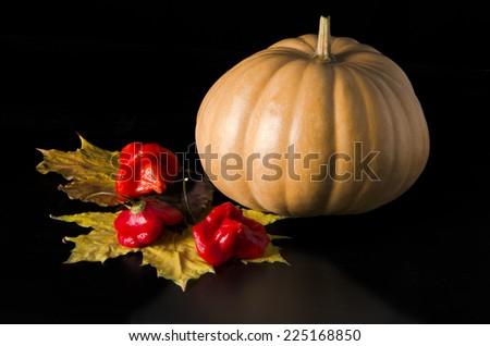pumpkin with autumn leaves on dark background - stock photo