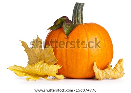 Pumpkin with autumn leaves on white background. Autumn composition