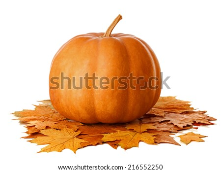 Pumpkin with dry  autumn leaves isolated  on white background - stock photo
