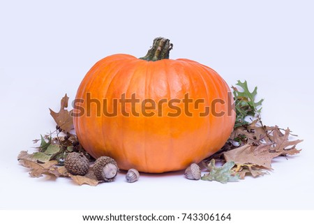 Pumpkin with Fall leaves on isolated white background