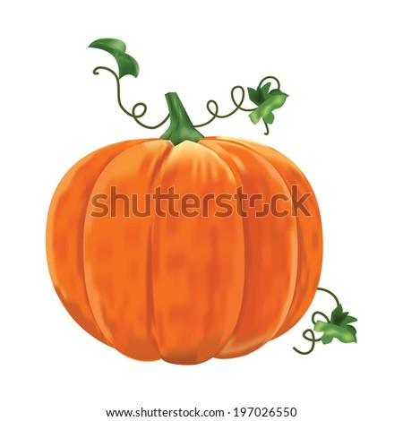 Pumpkin with leaves on a white background.  Raster version. - stock photo