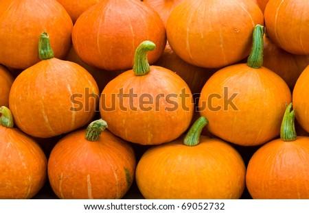 Pumpkins - stock photo