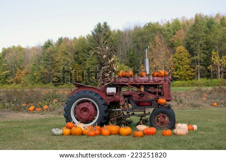 Pumpkins above truck - stock photo