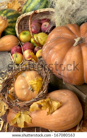 Pumpkins and apples in basket with watermelons on straw close up