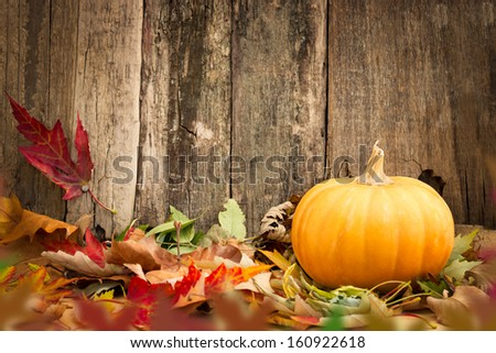 pumpkins and autumn leaves on wooden background   - stock photo