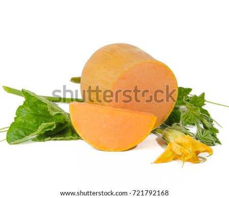 pumpkins and flower on white background