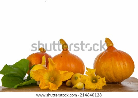 Pumpkins and flowers on a wooden table. - stock photo