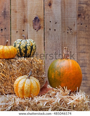 Pumpkins and squash on straw bales on a wood board background