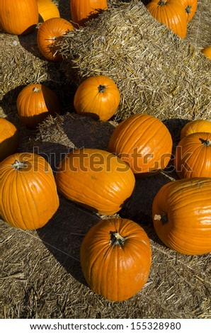 pumpkins and straw for halloween party