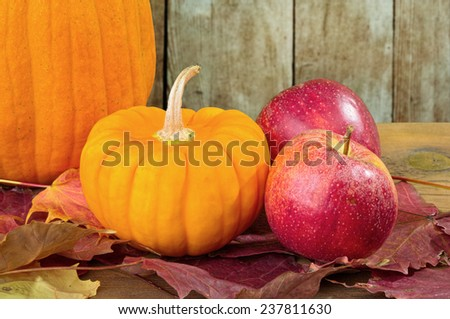 Pumpkins, Apples and Leaves in Autumn Background - stock photo