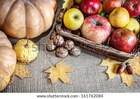 Pumpkins, apples in the basket, walnuts, acorns and autumn leaves on textured background - stock photo