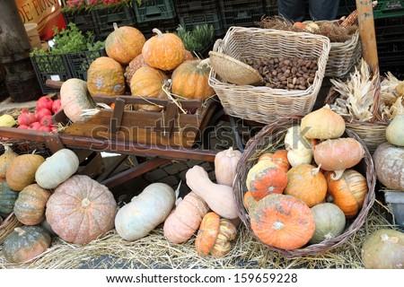 Pumpkins Cityscape in Rome Italy.  fresh vegetables in Rome's market at Campo Dei'Fiori. - stock photo
