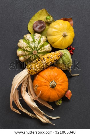 Pumpkins, corn cob, acorns, leaves and berries on dark background - stock photo
