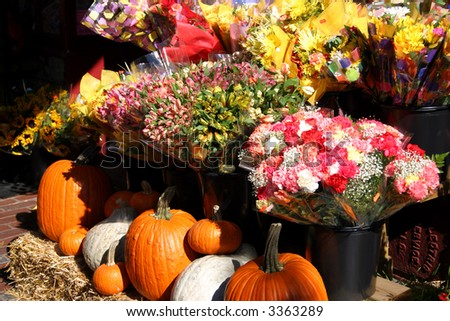 Pumpkins display during autumn at Charles Street, Beacon Hill, Boston - stock photo